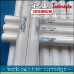 MFSF Cartridge Filter Indonesia  large