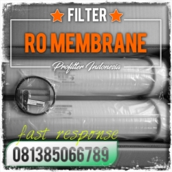 d d Toray RO Membrane Indonesia  large